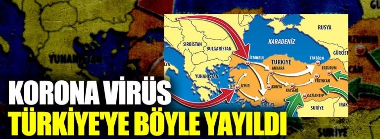 Türkiye'de Corona Nasıl Yayıldı Son Haberler